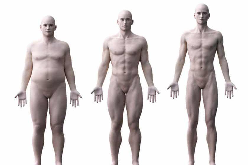 What Body Type am I? Endomorph, Ectomorph or Mesomorph?