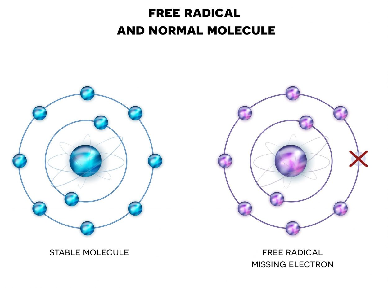 Free radicals contribute to oxidative stress | Fitness Savvy