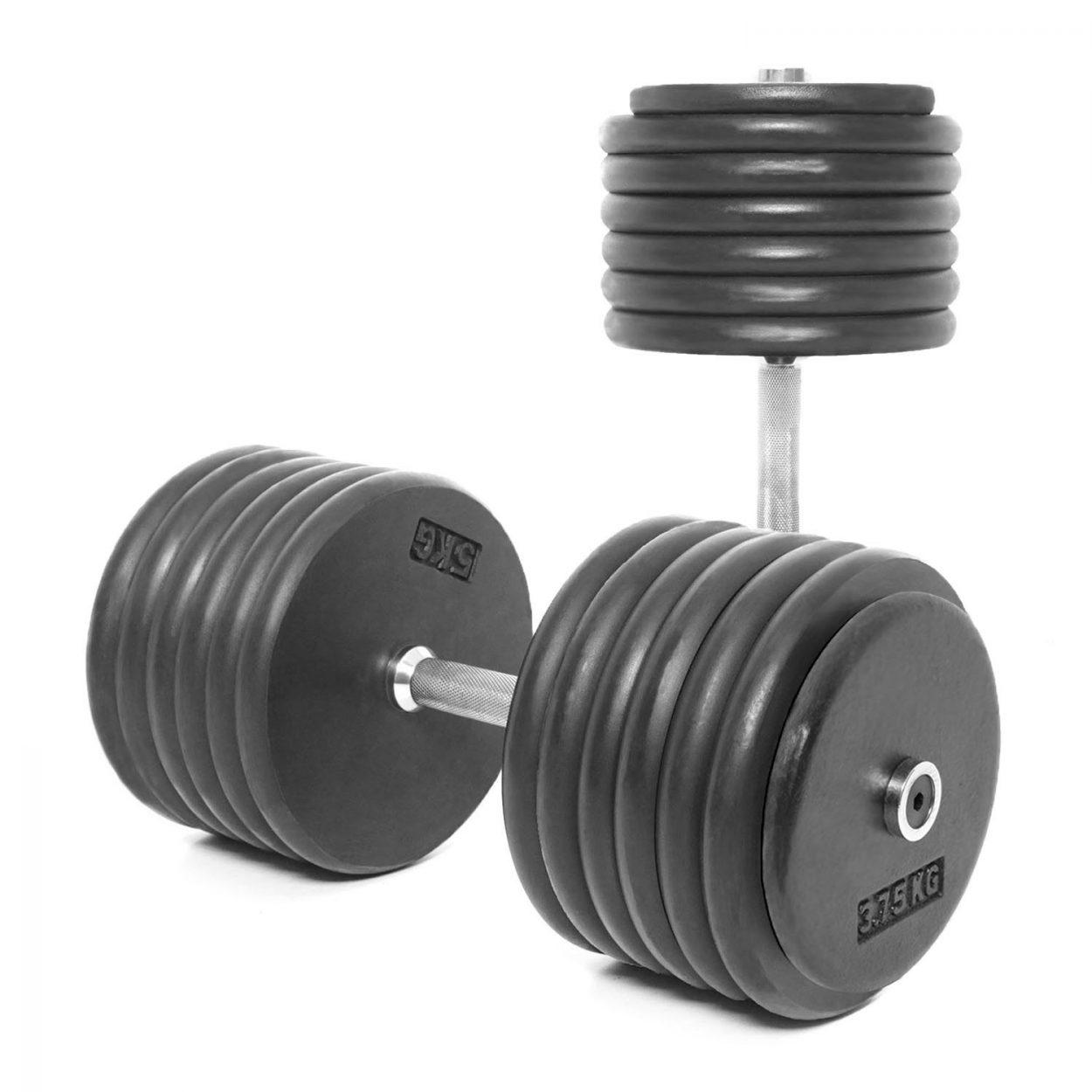 Body Power Pro-style Dumbbells