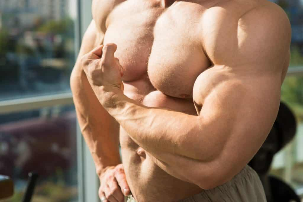 Muscular torso and arms.